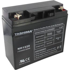BATTERIE VÉHICULE Tashima - Batterie moto NH1220 / NH1218 12V 20Ah