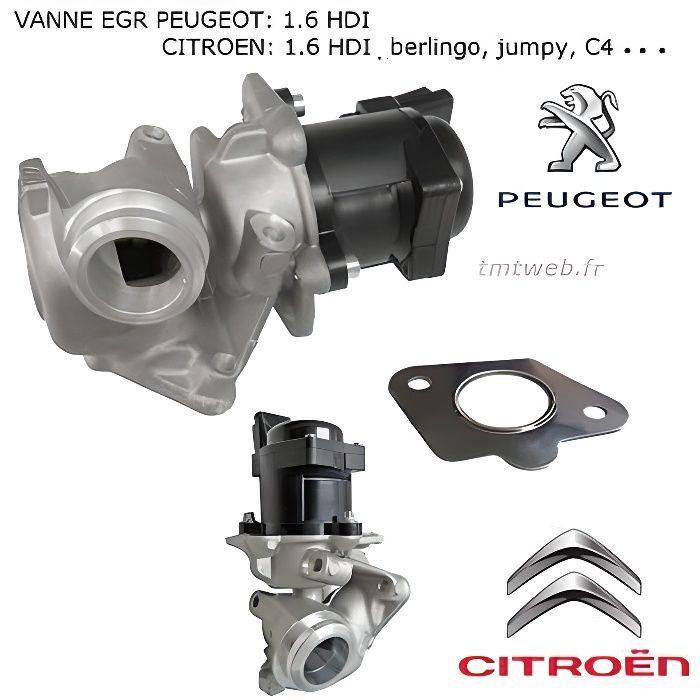 Vanne Egr moteur 1.6 PSA Peugeot Citroen Fiat Mini Volvo Mazda Ford