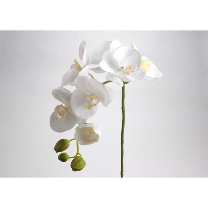 Orchidee artificielle