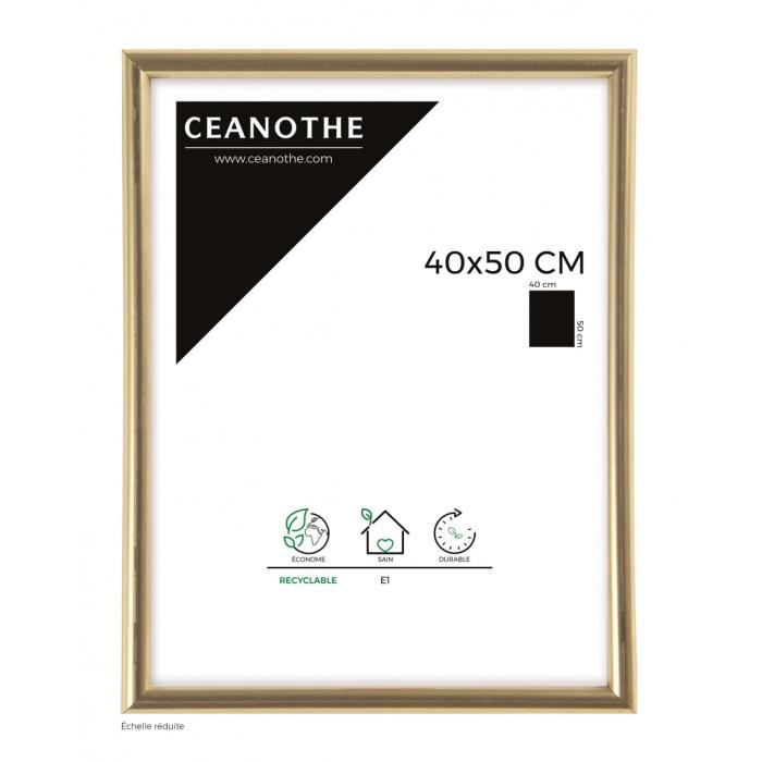 brio cadre photo dor gallery 40x50 cm achat vente cadre photo cdiscount. Black Bedroom Furniture Sets. Home Design Ideas