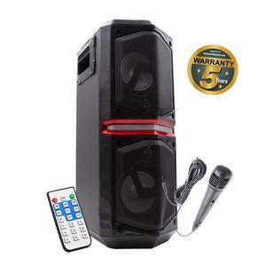 PACK SONO Lauson Sonorisation Portable avec Deux Haut-Parleu