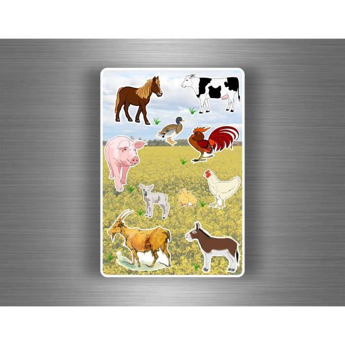 Crearreda 11101 Moderne Sticker Animaux de la Ferme Vache//Lapin//Mouton Repositionnable Taille M Vinyle Gris 31 x 31 x 0,05 cm