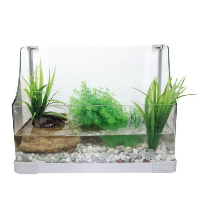 Aquarium tortues aquatiques ou terrestres aqua terra over for Aquarium tortue