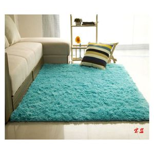 TAPIS Décoration Maison Trendy Tapis de salon Shaggy 120