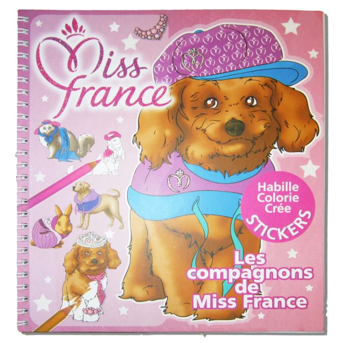 les compagnons de miss france achat vente livre de. Black Bedroom Furniture Sets. Home Design Ideas