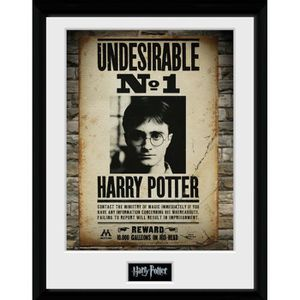 AFFICHE - POSTER Poster encadré collector Harry Potter