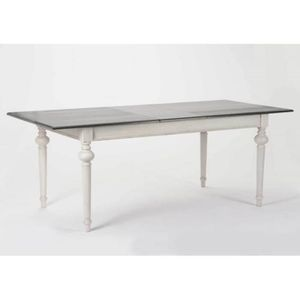 Table rectangulaire a rallonge achat vente table for Table rectangulaire a rallonge