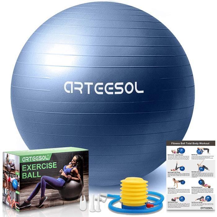 Ballon Fitness Ballon Fitness, Swiss Ball, Ballon Grossesse, Ballon Gym Ball Yoga Ballon d'exercice Balle de 45cm-55cm-65cm-75c9