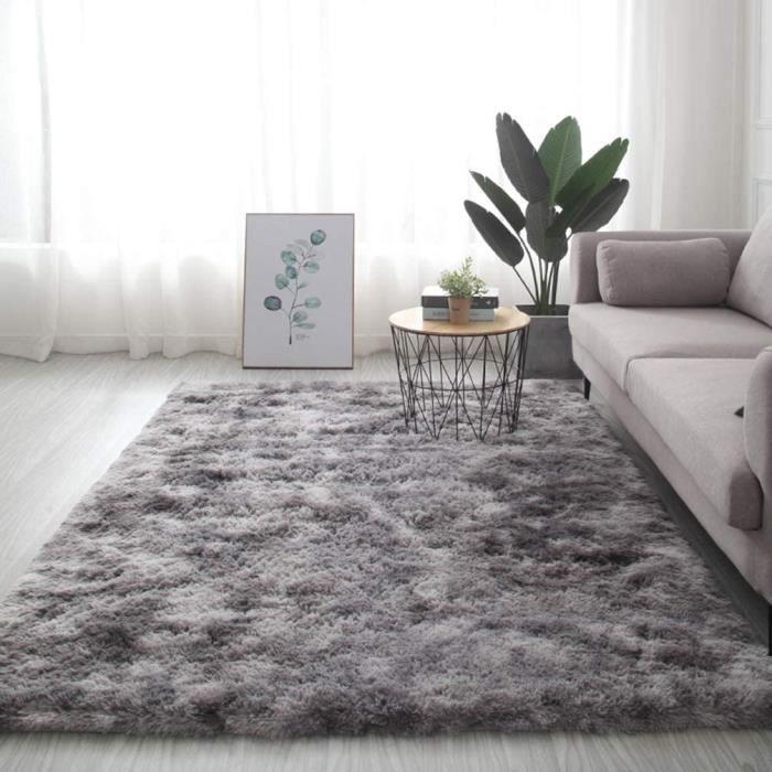 COUSSIN DE SOL ic Tapis antideacuterapant moelleux pour salon grand tapis super doux pour la maison la chambre et le confort gri886