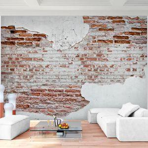 9338011a Tapisserie Photo For/êt naturelle 352 x 250 cm Laine papier peint Salon Chambre Bureau Couloir d/écoration Peinture murale d/écor mural moderne 100/% FABRIQU/É EN ALLEMAGNE
