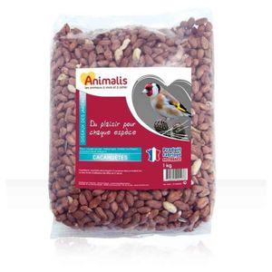 BEURRE DE CACAHUÈTE Animalis - Cacahuètes pour Oiseaux des Jardins - 1