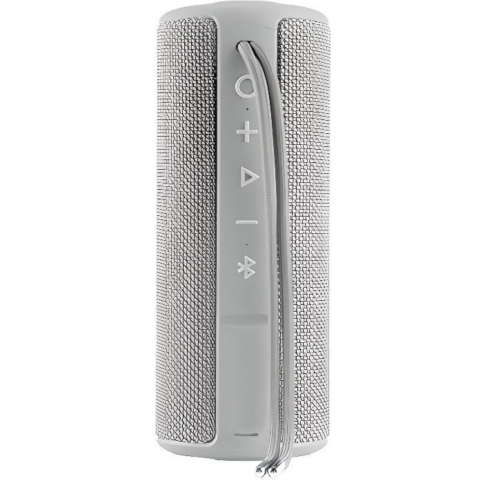 Vieta Pro Goody Enceinte sans Fil Bluetooth avec Radio FM, Lecteur USB, auxiliaire, Microphone intégré, étanchéité IPX6, Batterie 12