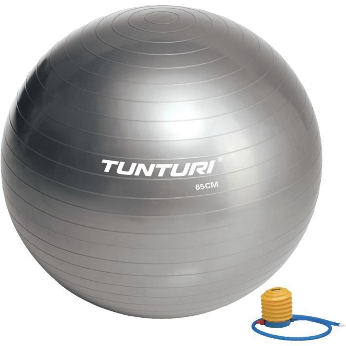 TUNTURI Gym ball ballon de gym 65cm argent
