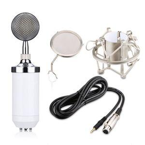 HAUT-PARLEUR - MICRO Condensateur Studio d'enregistrement Microphone de