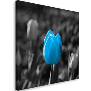 TABLEAU - TOILE Tableau Toile Image Cadre déco Canevas  Tulipe ble
