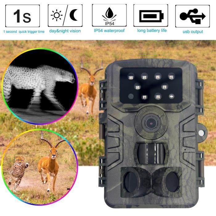 Détecteur de chasse HD Surveillance caméra étanche à induction infrarouge rouge extérieur webcam100