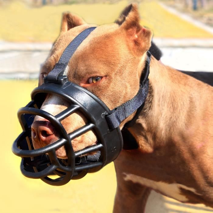 masque protection chien