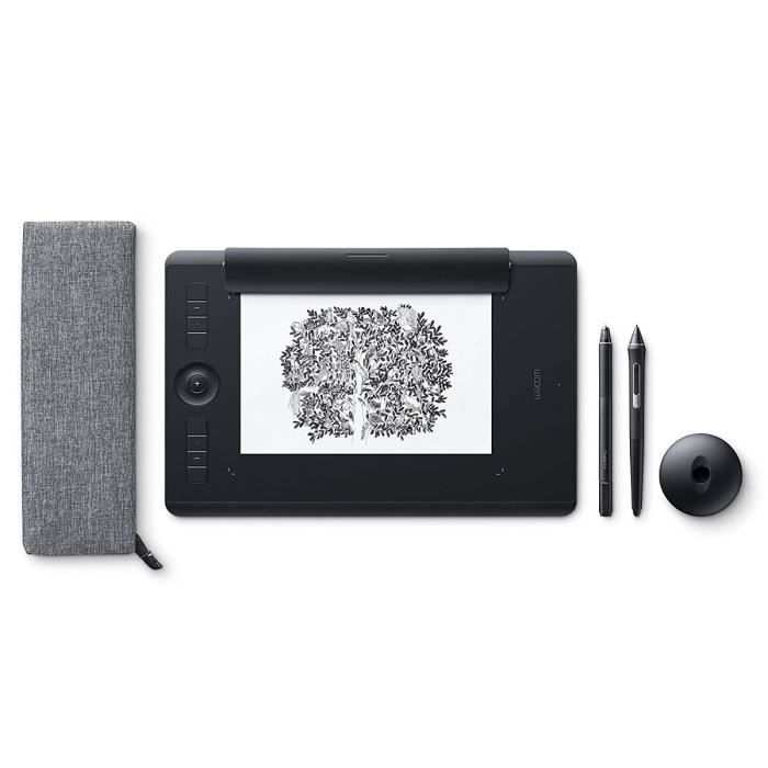 Wacom Tablette graphique Intuos Pro Paper Edition - Large