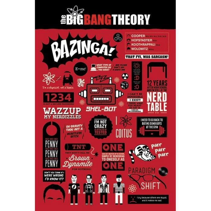 The Big Bang Therory - Infographic - 61x91,5cm - AFFICHE - POSTER