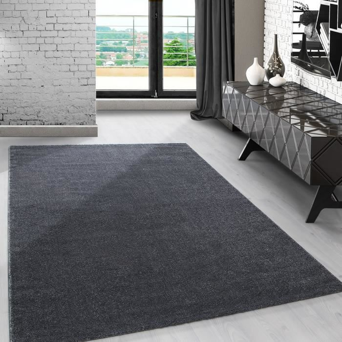 tapis gris uni de salon achat vente pas cher. Black Bedroom Furniture Sets. Home Design Ideas