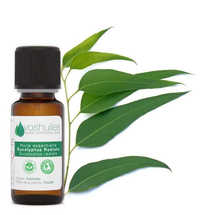 Huile Essentielle d'Eucalyptus Radiata 250ML