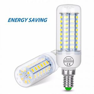 AMPOULE - LED Version Blanc - E27 72leds 25W - Two year warranty