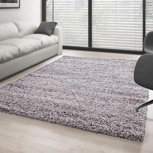 Tapis Salon Shaggy Gris, 160 x 230 cm Descente de lit Chambre Grande Taille Tapis Poils Longs Moderne tapid Moquette Poil Long tapi