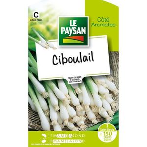 GRAINE - SEMENCE LE PAYSAN Ciboulail (Lot de 3)