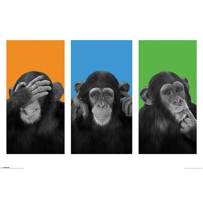 poster les 3 singes achat vente affiche cdiscount. Black Bedroom Furniture Sets. Home Design Ideas