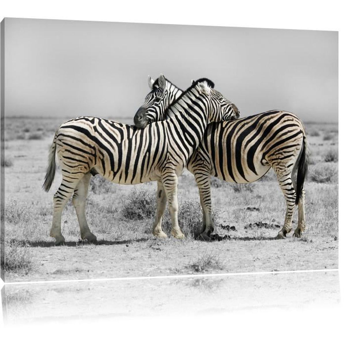 tableau noir et blanc zebre achat vente tableau noir. Black Bedroom Furniture Sets. Home Design Ideas