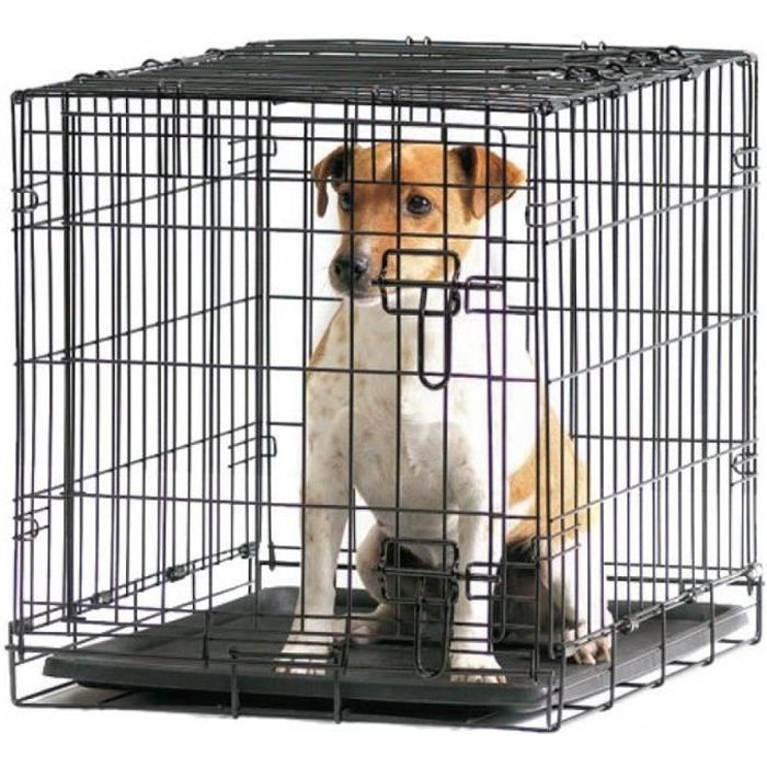 cage 50cm savic pliante m tal transport chien achat vente caisse de transport cage 50cm. Black Bedroom Furniture Sets. Home Design Ideas