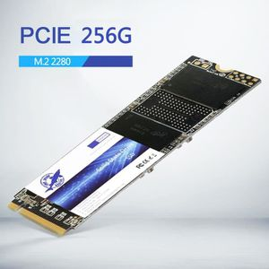 DISQUE DUR SSD SSD Performance Dogfish SSD 256 Go - Disque SSD NV