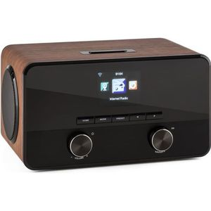 RADIO CD CASSETTE auna Connect 100 - Radio wifi internet avec 2 haut
