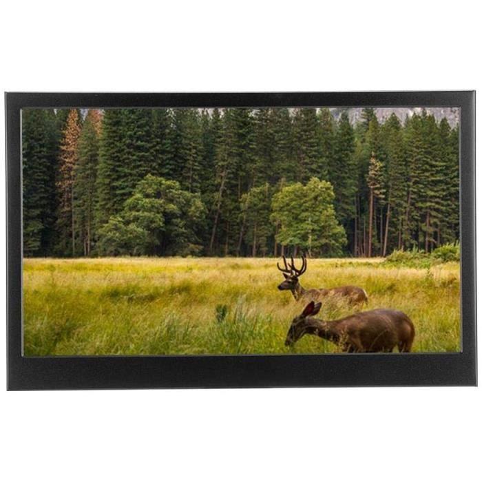 Écrans PC Moniteur Portable, écran Full HD 1920 x 1080 de 13,3 Pouces 1080P Écran IPS Mini-Moniteur Full HDMI de Type C 1908