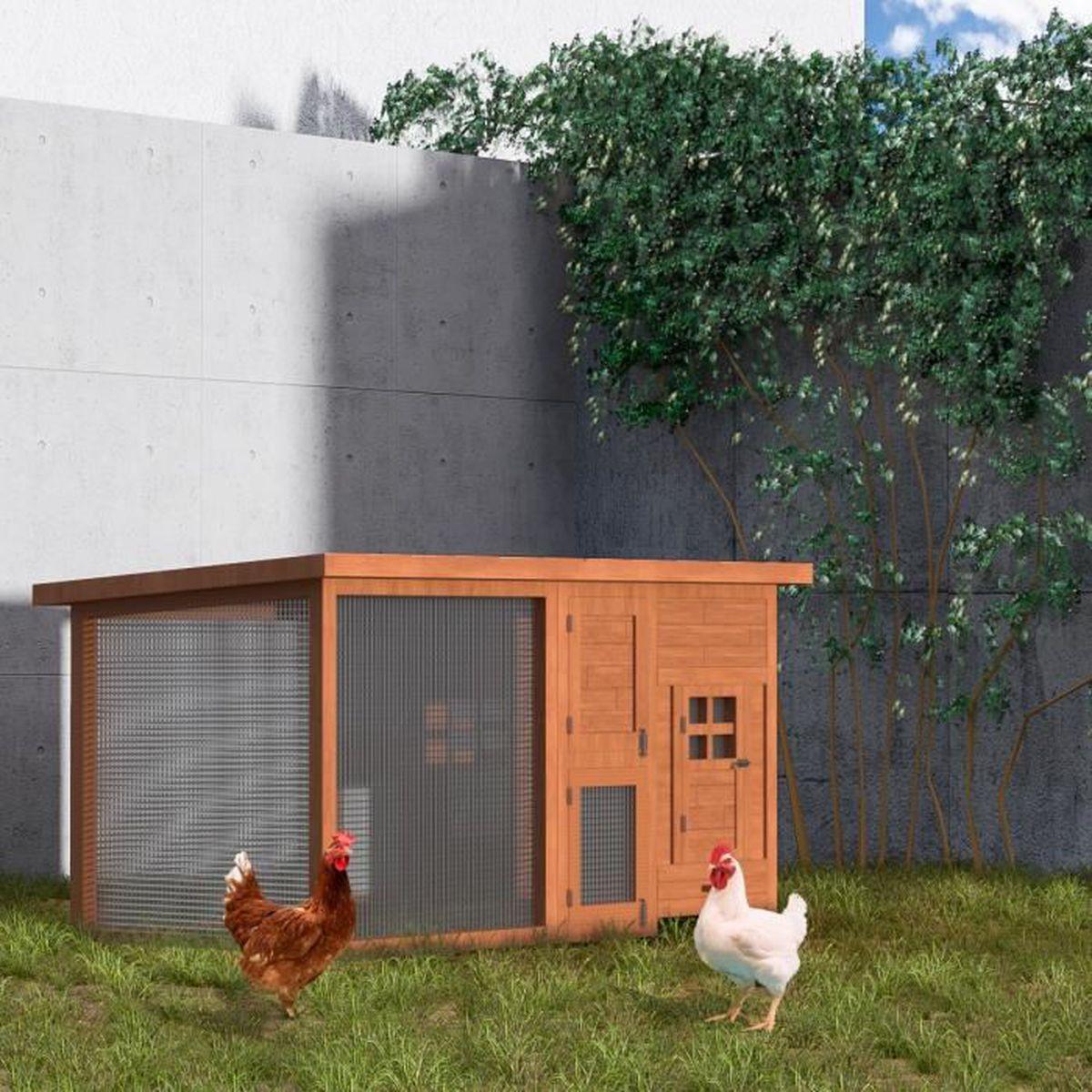 POILS & PLUMES Poulailler Romeo en bois 2/4 poules 160 x 75 ...