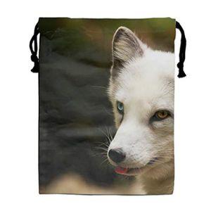 Schleich Vie sauvage Arctic Fox 14805 NEUF