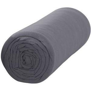 DRAP HOUSSE TODAY Drap housse 100% coton - 140 x 190 cm - Cano