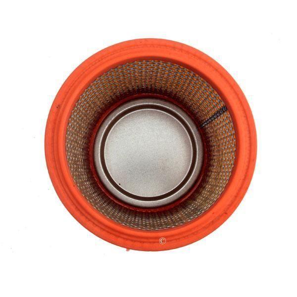 Cartouche filtre cylindre longue duree 787421 pour aspirateur Thomas I