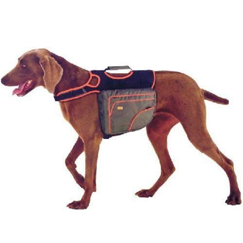 Sac à dos ergonomique pour chiens