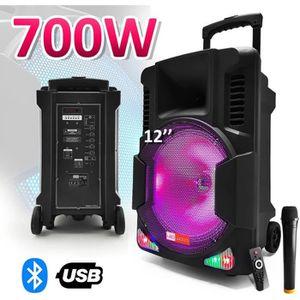 ENCEINTE ET RETOUR Enceinte active batterie 700W 12