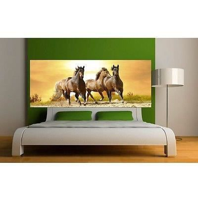 papier peint t te de lit chevaux 3654 dimensions. Black Bedroom Furniture Sets. Home Design Ideas