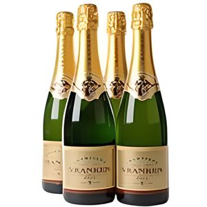 CHAMPAGNE Champagne brut 75cl Vranken