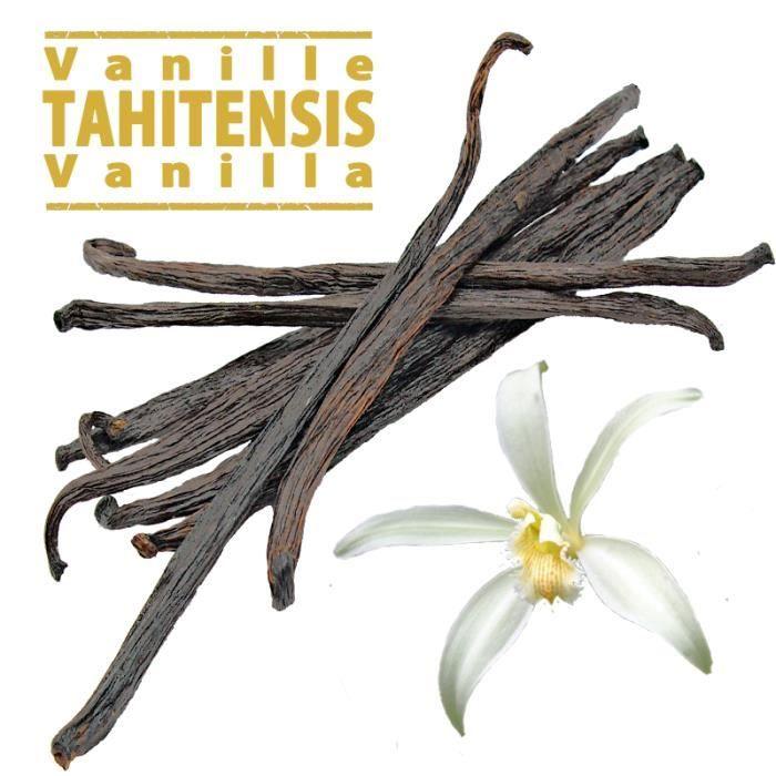 10 gousses de Vanille Tahitensis. Taille des gousses : 11-13 cm pour 25gr de vanille
