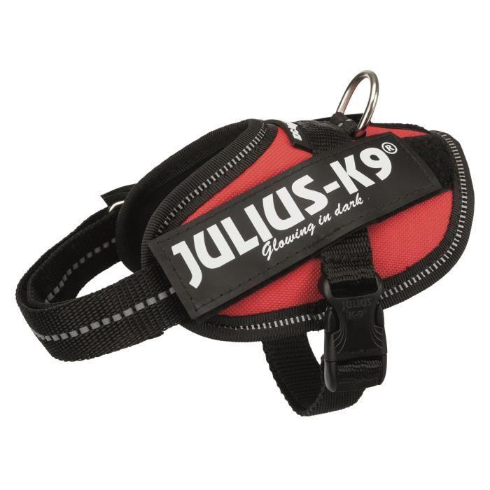 JULIUS K9 Harnais Power IDC Baby 2–XS–S : 33–45 cm - 18 mm - Rouge - Pour chien