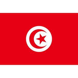 DRAPEAU - BANDEROLE Drapeau Tunisie Tunisien