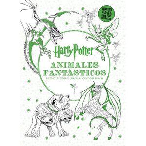 Livre Coloriage Harry Potter