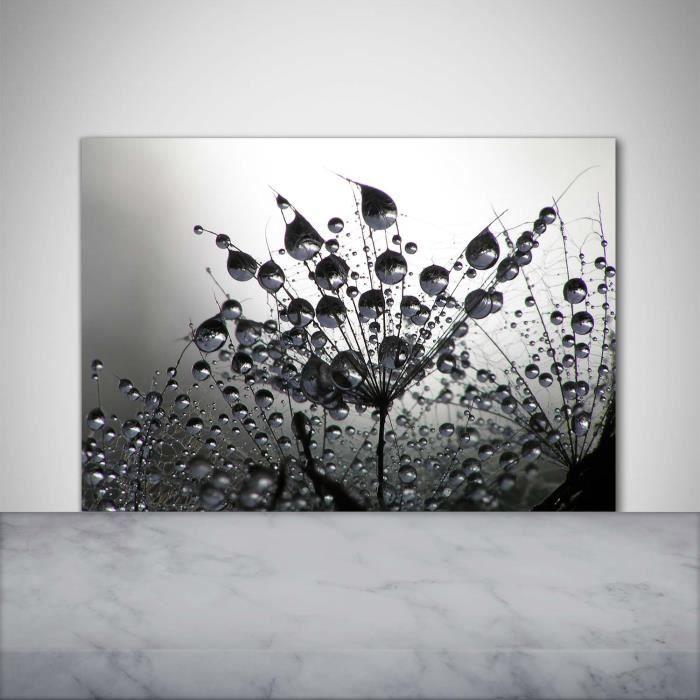 Tulup 100x70cm Crédence de cuisine sur verre sécurité:- Fleurs plantes - Graines De Pissenlit - Noir blanc Multicolore