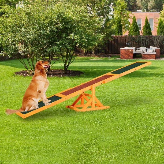ENTRAINEMENT - AGILITY Bc-elec - HCWS Balançoire à bascule pour chien agi