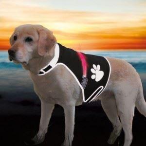 Trixie Safer Life Gilet de sécurité Flash