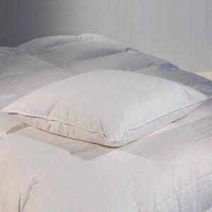 OREILLER Oreiller plat naturel 60x60 cm 30% duvet neuf